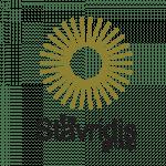 digital marketing agency canberra australia